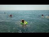 Купание лягушонка в море