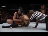 Paige Tamina Snuka Vs. Kaitlyn Caylee Turner - WWE NXT 8.8.12 #3
