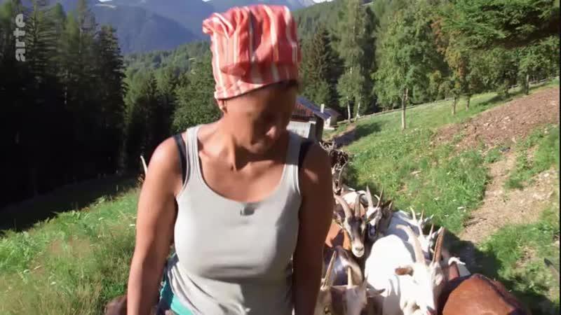 ARTE Regards - L'intégration réussie d'une Éthiopienne en It