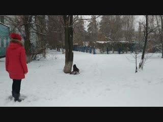 Зелёные, Чевтаева Кристина и Мэйкер, задание1+доп.