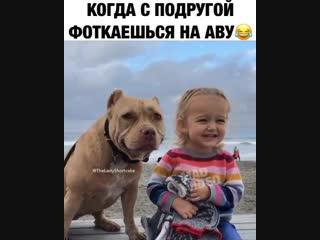 Если внимательно посмотреть даже видно как собакен улыбается