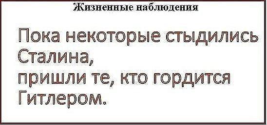 lfxLYZuvzbE.jpg