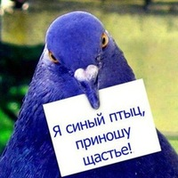 Сердце Дракона, 11 июля , Екатеринбург, id115155521