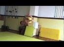 Real capoeira gafanhoto 2012 new moves