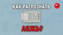Язык лжи. Как распознать ложь TED-Ed на русском