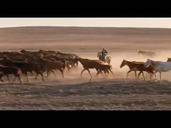 Интересный Фильм СТАЯ ВОЛКОВ Русские боевики, криминальные фильмы, новинки 2016