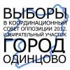 Выборы оппозиции 2012 в Одинцово
