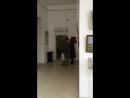 Наша выставка Два мира на ул. Кирова г. Воронеж