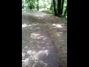 часть большого круга биатлонистов в Винновской роще