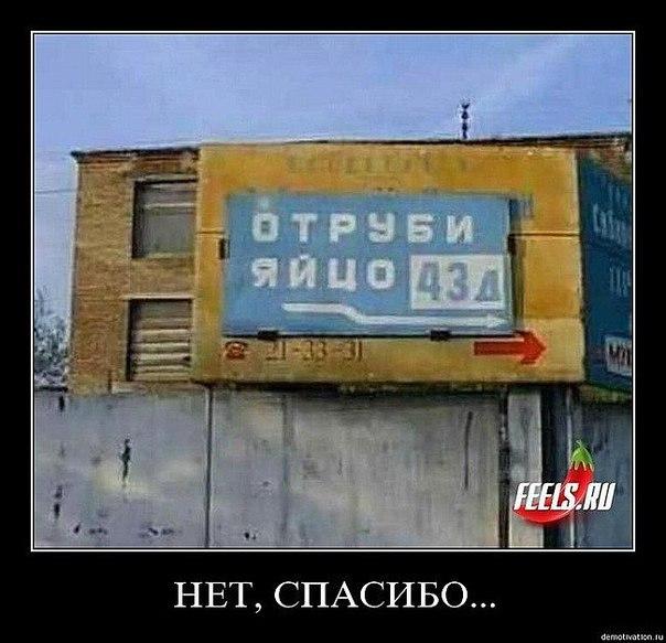 https://pp.vk.me/c543106/v543106152/d144/QL3kx14c6Dc.jpg