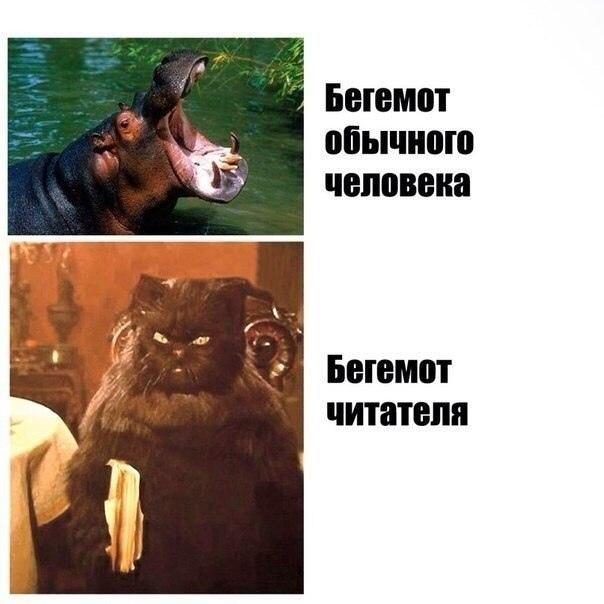 Фото №456273259 со страницы Михаила Тимченко