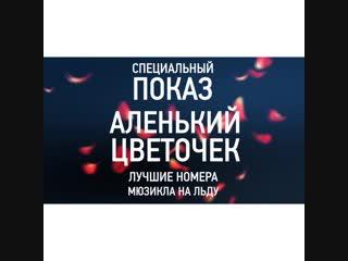 Татьяна Навка на катке МЕГА Парка