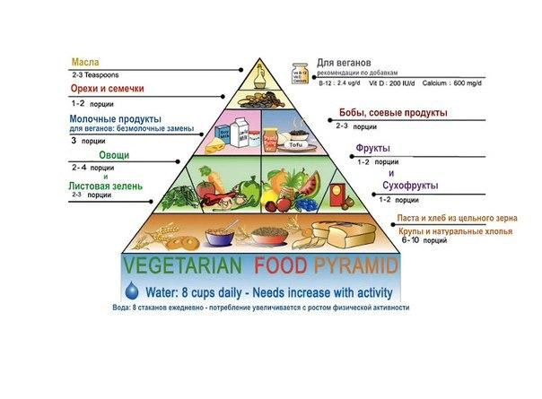 Вегетарианская диета для похудения: меню на неделю, отзывы минус.