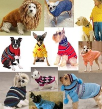 Your loved dog is feeling cold.  Knit nice and warm sweater for it!