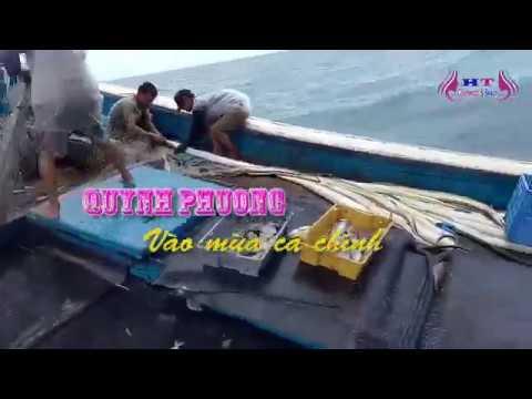 Cá chình khủng lồ được ngư dân quỳnh phương đánh bắt