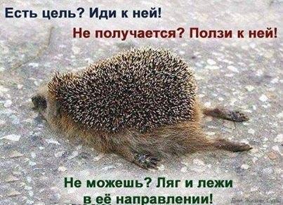 http://cs617427.vk.me/v617427227/12d5e/_AybD4Nc3-s.jpg