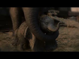 """Arcade fire - baby mine (from """"dumbo"""")"""