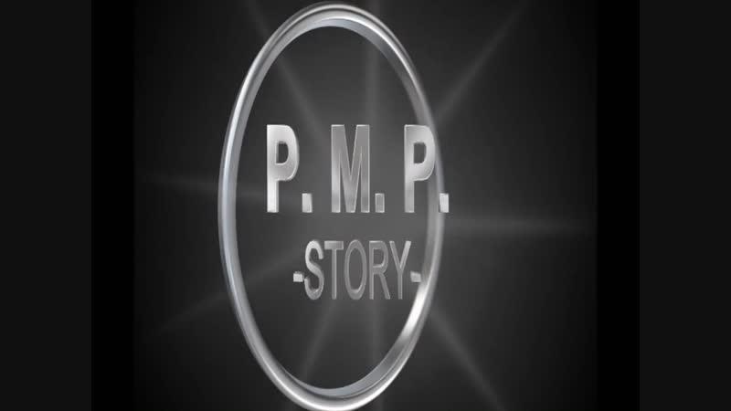 P M P zarSET№3