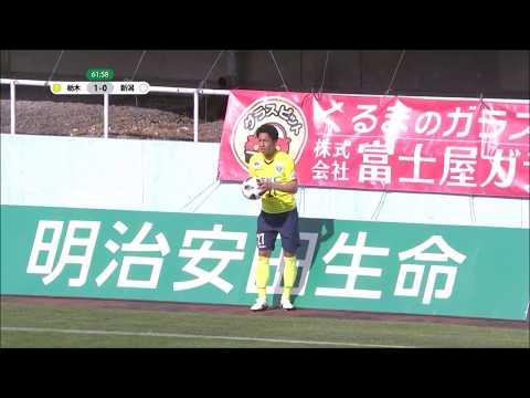 【公式】ゴール動画:服部 康平(栃木)63分 栃木SCvsアルビレックス新
