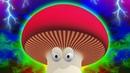 Смешной мультик о грибах- мухоморы