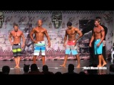 2013 NPC Iron Mountain Men's Physique Overall Video