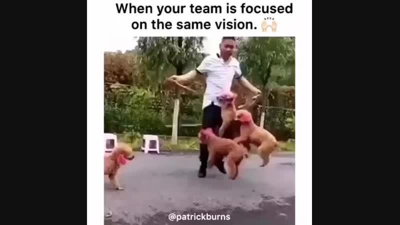 мы - команда!