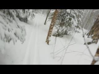 Метель на лыжне - 2