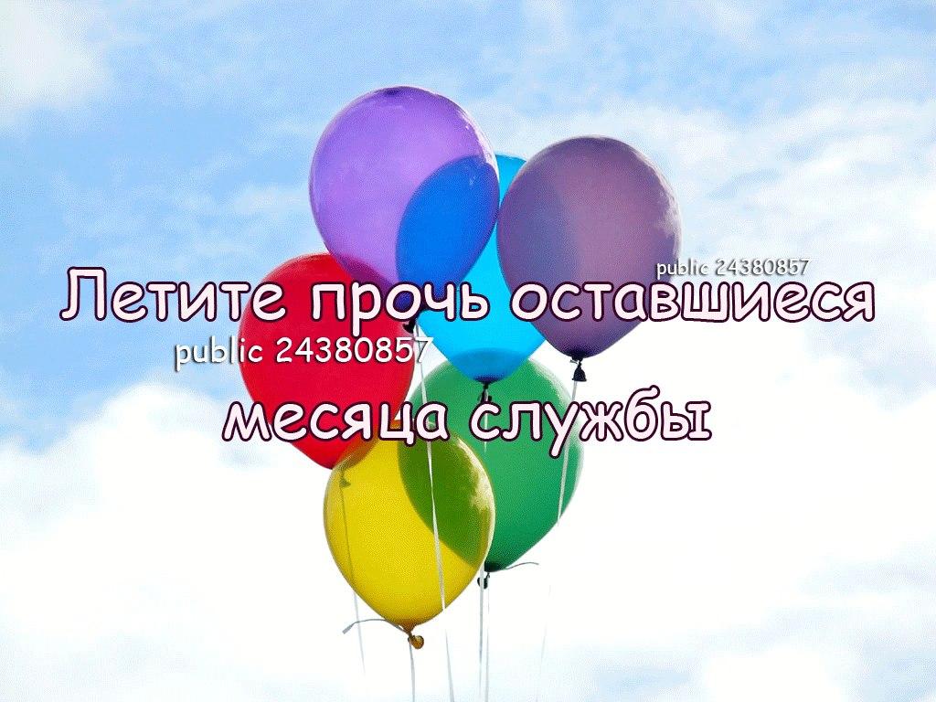 http://cs614816.vk.me/v614816049/7f4d/CEWj2f4h7_U.jpg
