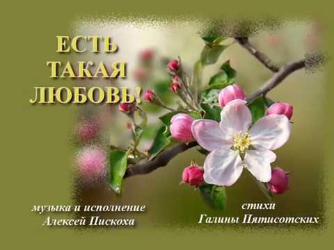 ЕСТЬ ТАКАЯ ЛЮБОВЬ стихи Галины Пятисотских музыка и исполнение Андрей Пискоха