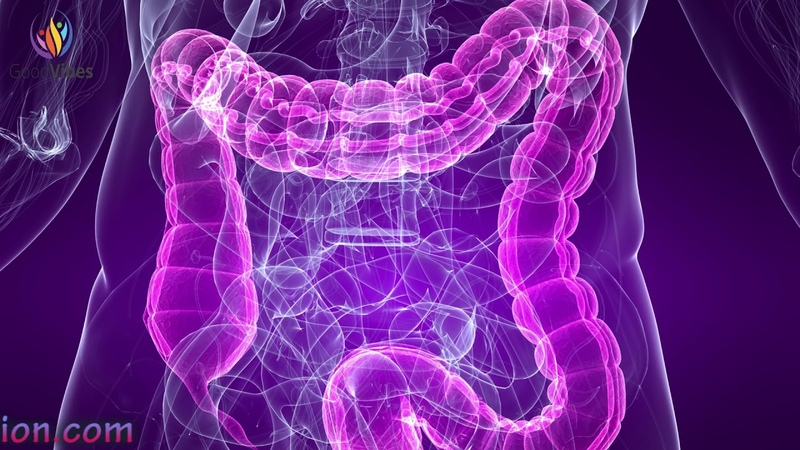 Powerful Stomach Intestine Treatment Sound Therapy - Digestion Enhancement Binaural Beats GV141