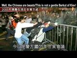 Майдан в Гонконге - это не киевский Беркут. Говорят, каждому китайцу в жопу вставили бутылку, звери!