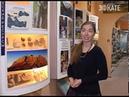 Сочи на дне океана Это готовы подтвердить сотрудники музея истории города Новости Сочи Эфкате