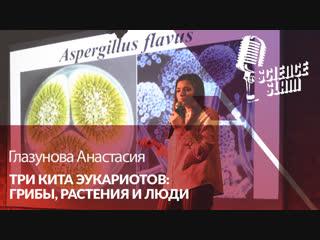 Глазунова Анастасия • Три кита эукариотов: грибы, растения и люди