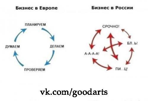 Дмк трейдинг