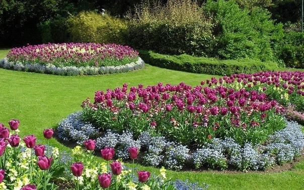 идеи оригинальных и красивых клумб что такое клумба, и чем она отличается от других видов цветников, мы выяснили (клумбы и цветники в чем разница) на этот раз хочется подробнее поговорить о том,