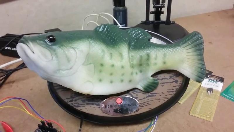 Amazon Alexa Hacked Into Billy Bass Fish