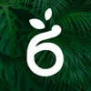 Ботаник. Ярмарка Орхидей и редких растений