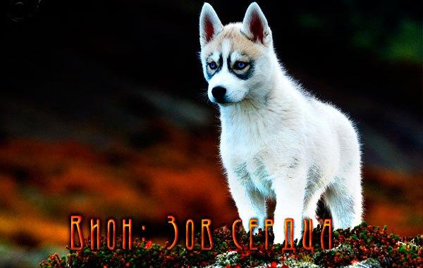 http://cs616820.vk.me/v616820409/3ce8/XsEbww5aesc.jpg