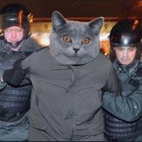 Фома Киняев, 20 февраля , Полтава, id206795403