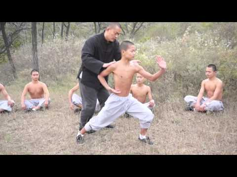 Traditional Xiao Hong Quan and its Gongfa (skill methods) tutorial