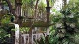 Great Gardens Las Pozas, Mexico - NOWNESS
