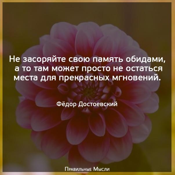 Фото №456278565 со страницы Людмилы Плеханова (Ремизова)