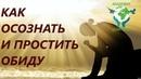 Как осознать и простить обиду на глубинном уровне. Николай Пейчев.