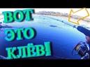 ВОТ ЭТО КЛЁВ На каждый заброс Новый Спиннинг ГНЁТ В Калач Болен Рыбалкой №545