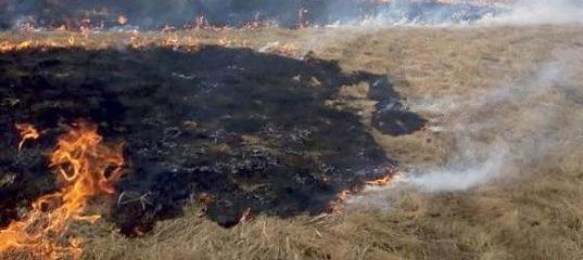 Профилактический отжиг сухой растительности в Усть-Илимске