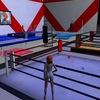 Виртуальные бои: Catfight в Second Life