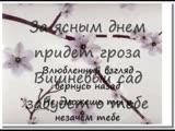 Елена Есенина - Вишня karaoke (lyrics) (1)