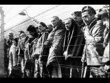 Жуткие фото лагеря смерти Освенцим / Creepy photos of victims of the death camps