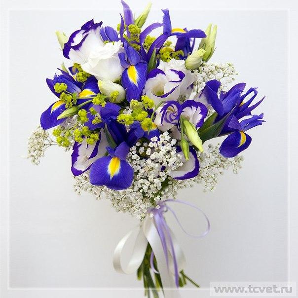 http://cs608428.vk.me/v608428499/2903/1_7G6MqQtbI.jpg