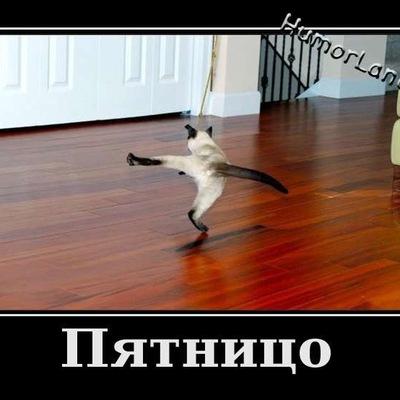 Марина Зимина, 6 января , Черновцы, id213890334